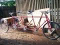 Jack Taylor Triplet Tricycle - 1985