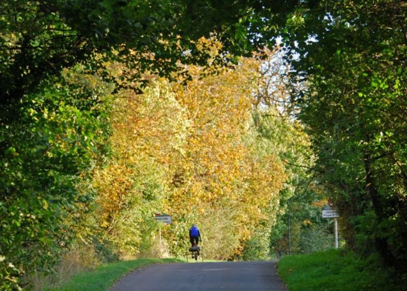 November. Late Autumn at Ossington Photo by Martin Purser